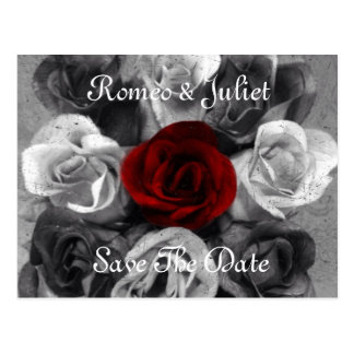Black White Rose Save The Date Postcard