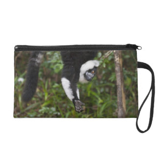 Black & white ruffed lemur hanging up-side-down wristlet purse