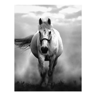 Black White Running Horse Freedom Letterhead