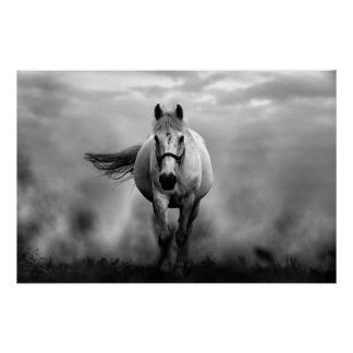 Black White Running Horse Freedom Poster