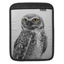 Black & White Serious Big Eyed Owl iPad Sleeve