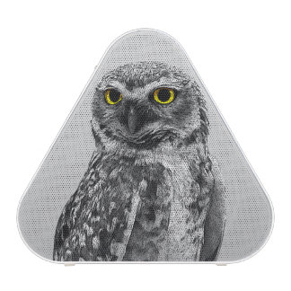 Black & White Serious Big Eyed Owl Speakers