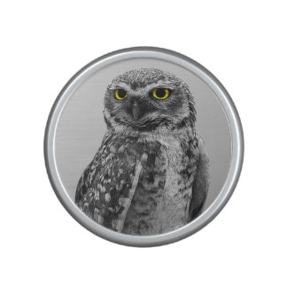 Black & White Serious Big Eyed Owl Speakers