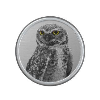 Black & White Serious Big Eyed Owl Speakers Speaker