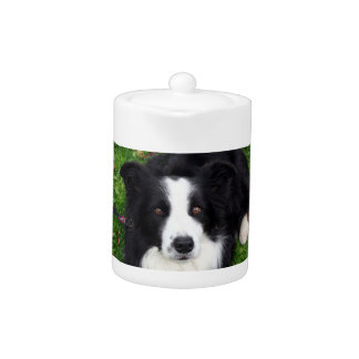 Black & white sheep dog teapot