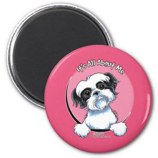 Black/White Shih Tzu IAAM 2 Inch Round Magnet