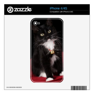 Black & white short-haired kitten,2 1/2 months decals for the iPhone 4S