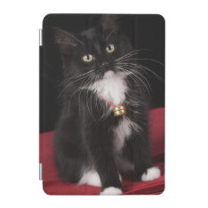 Black & White Short-haired Kitten,2 1/2 Months Ipad Mini Cover at Zazzle