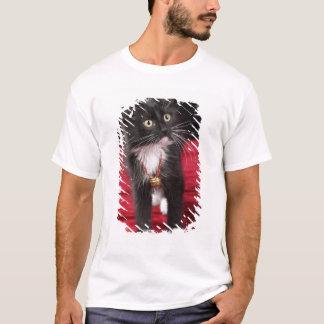 Black & white short-haired kitten, 2 1/2 months T-Shirt