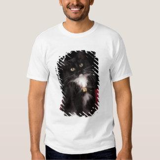 Black & white short-haired kitten,2 1/2 months T-Shirt