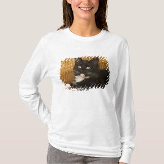 Black & white short-haired kitten on hamper lid, T-Shirt