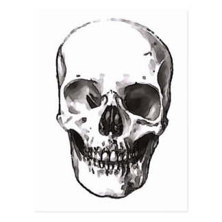 Black & White Skull Postcard