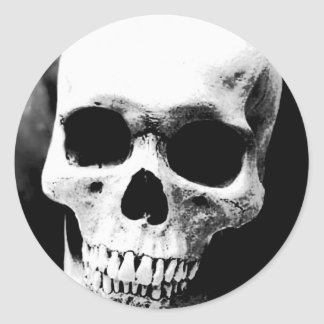 Black & White Skull Sticker