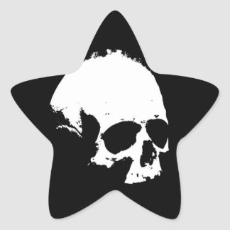 Black & White Skull Star Sticker
