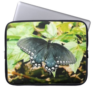 Black White Swallowtail Butterfly Photo Sleeves