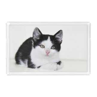 Black White Thoughtful Kitten Acrylic Serving Tray Rectangle Serving Trays