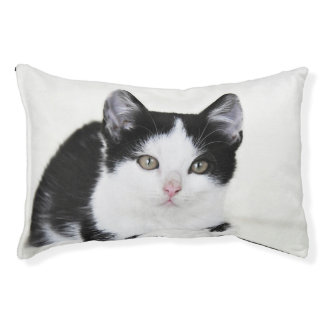 Black White Thoughtful Kitten Dog Bed Small Dog Bed