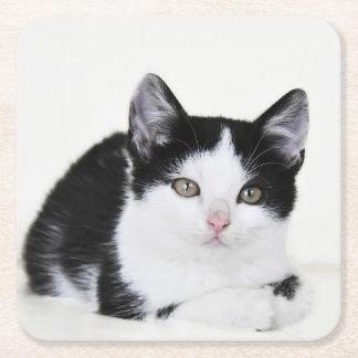 Black White Thoughtful Kitten Paper Coasters Square Paper Coaster