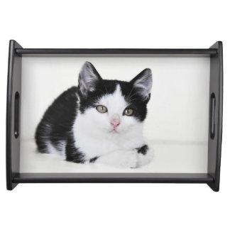 Black White Thoughtful Kitten Serving Tray