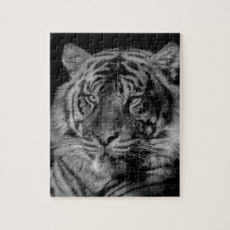 Black & White Tiger Jigsaw Puzzle