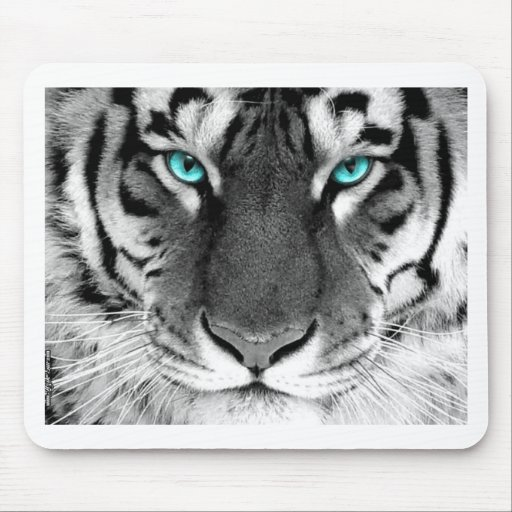 Black White Tiger Mouse Pads