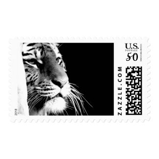 Black & White Tiger Postage