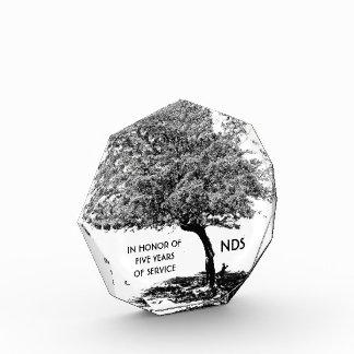 Black & White Tree Award