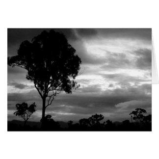Black White Tree Landscape Greeting Card