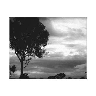 Black & White Treescape Canvas Print