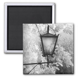 Black & White view of light fixture Refrigerator Magnets