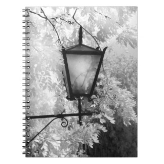 Black & White view of light fixture Notebook