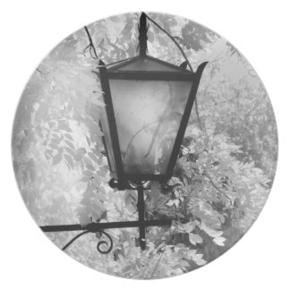 Black & White view of light fixture Party Plates