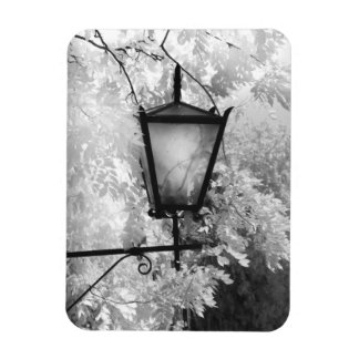 Black & White view of light fixture Magnet