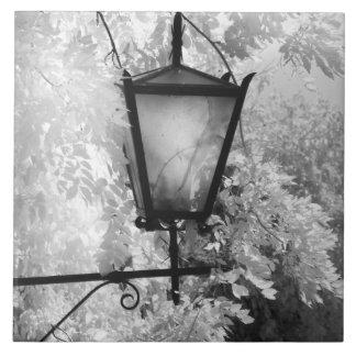 Black & White view of light fixture Tile