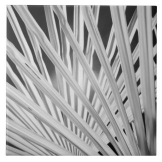 Black & White view of palm tree fronds Ceramic Tile