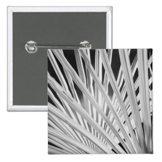 Black & White view of palm tree fronds Pinback Button