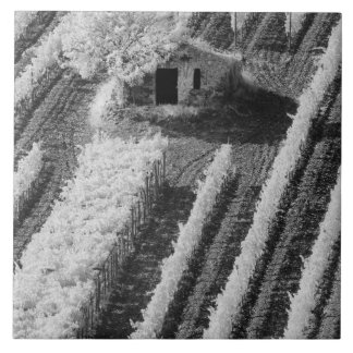 Black & White view of small stone barn Ceramic Tile