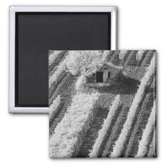 Black & White view of small stone barn Magnet