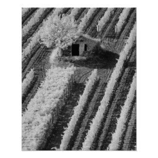 Black & White view of small stone barn Poster