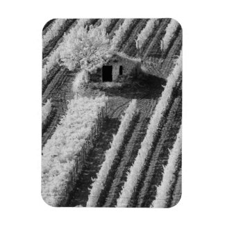 Black & White view of small stone barn Magnets