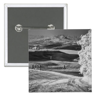 Black & White view of winding road Button
