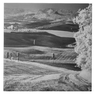 Black & White view of winding road Ceramic Tile