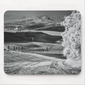 Black & White view of winding road Mouse Pad