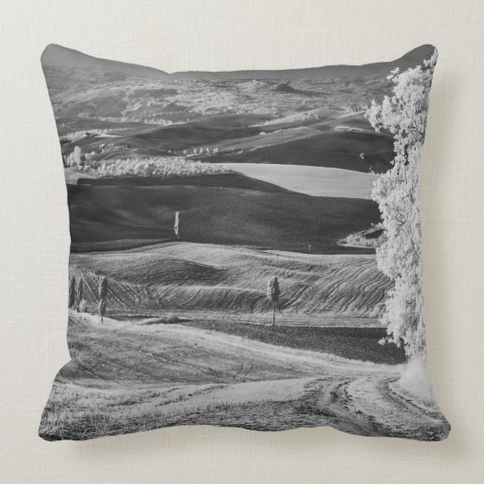 Black & White view of winding road Throw Pillow