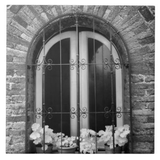 Black & White view of window and flower pots Tile