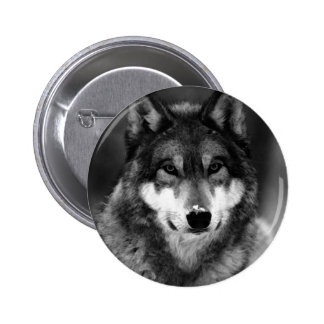 Black & White Wolf Button