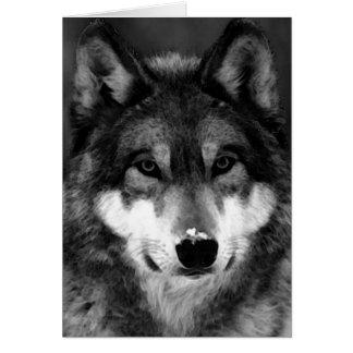 Black & White Wolf Greeting Card