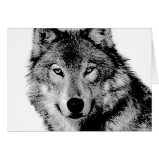 Black & White Wolf Card
