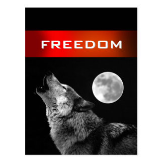 Black White Wolf Howling at Moon Freedom Postcard