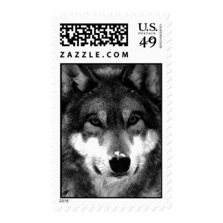 Black & White Wolf Postage